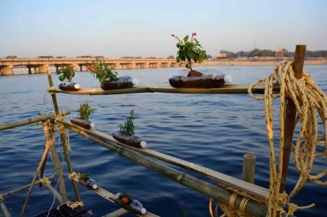 OI-Ahmedabad-planters