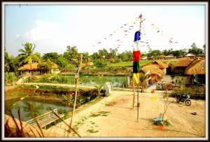 Sundarban4