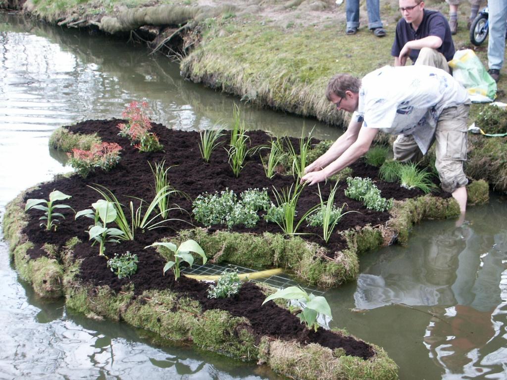 Bepflanzung-Schwimmgarten